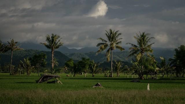 Sumbawa,  Indonezja,  2016